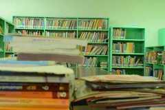 Grade-School-Library